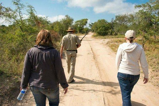 Arathusa Safari Lodge: Bushwalk