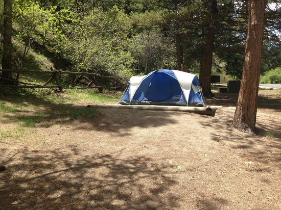 Aspenglen Campground, Rocky Mountain National Park: #26