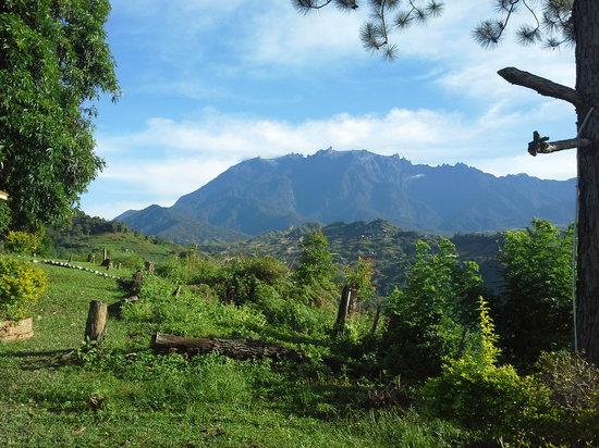 Seri Kinabalu Resort : view of mt.kota kinabalu frm hotel seri kinabalu
