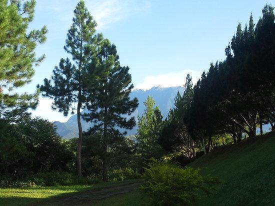 Seri Kinabalu Resort : viewof mt. kota kinabalu frm seri kinabalu hotel