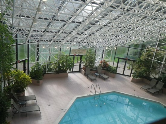 Toronto Airport Marriott Hotel: Pool/Atrium