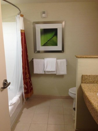Courtyard by Marriott Atlanta Buford Mall of Georgia: Bathroom