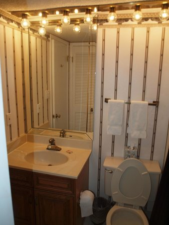 Edgewater Beach Condominium: Guest bath