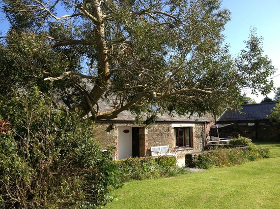 Bucklawren Bed and Breakfast and Self-Catering Cottages: cottages