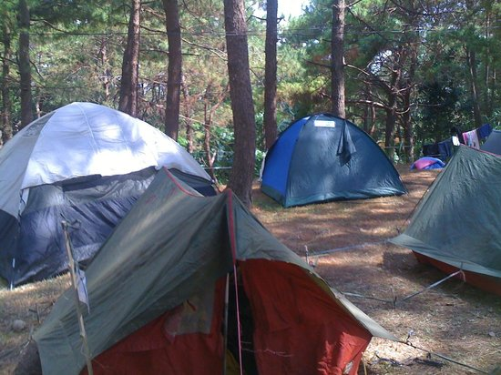 EPIC PARK Rainforest Camping Tanay Photo