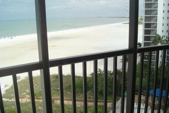 Pointe Estero Beach Resort: Frente al hotel la playa es extensa y de arena blanca