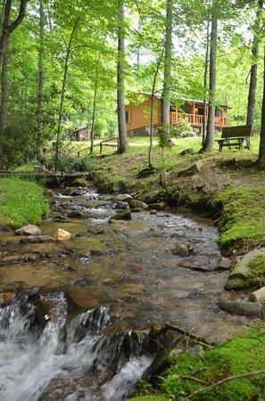 Panther Creek Resort: Panther Creek Lodge