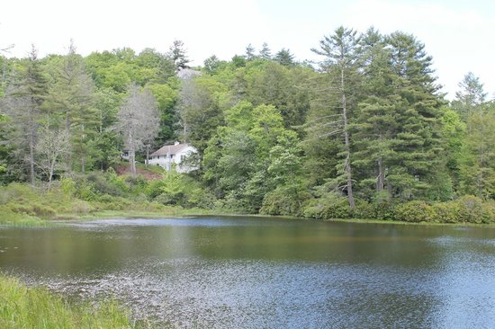 Highlands Biological Station, Nature Center and Botanical Gardens: Lake