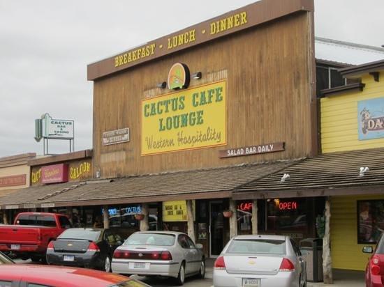 Cactus Cafe & Lounge: cactus cafe lounge