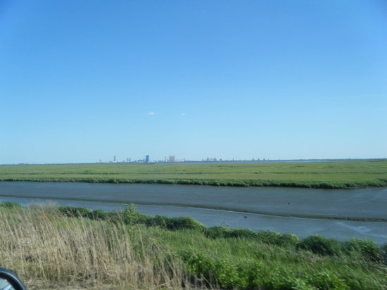 Edwin B. Forsythe National Wildlife Refuge: Driving trail gives the most opportunities for bird watching.
