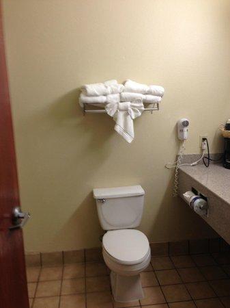Comfort Suites Plainview: Bathroom