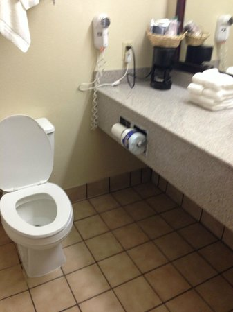 Comfort Suites Plainview: Commode in close proximity to coffee pot