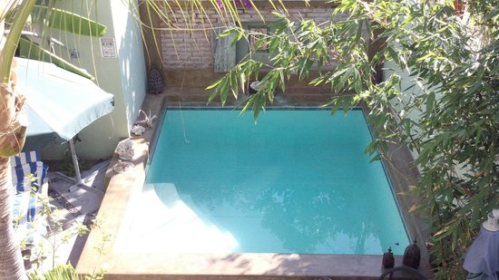 Casa Verde Inn : Alberca
