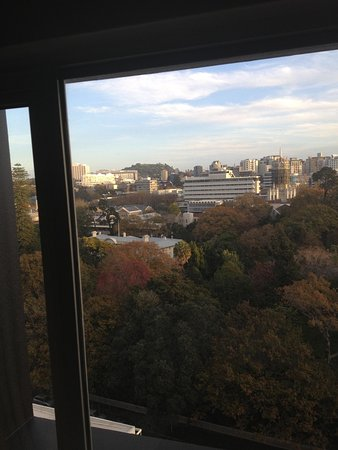 Pullman Auckland: 12 floor view from the bedroom & mt Eden in the distance classic!!
