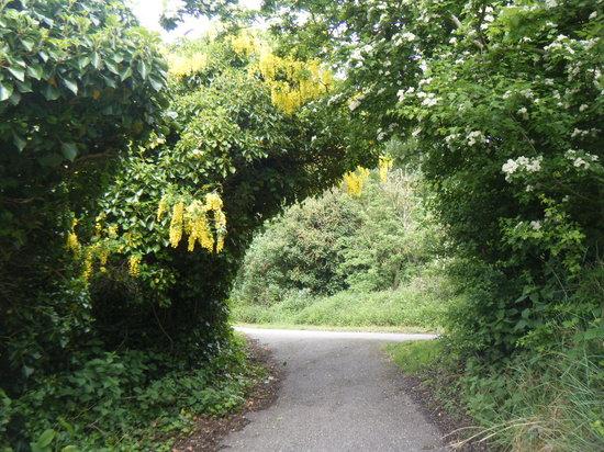 Novotel Ipswich: River walk