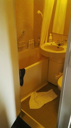 Smile Hotel Tokyo Nihombashi: Small cube bathroom served well