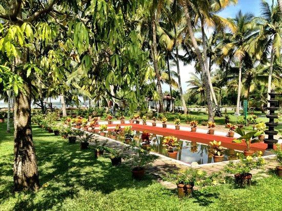 Soma Kerala Palace : Nice Reflecting Pond