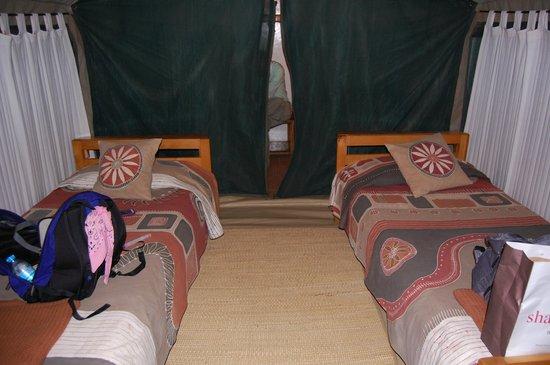 Tarangire Safari Lodge : Our tent