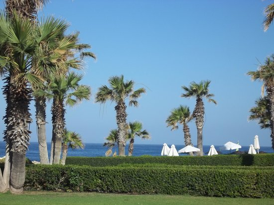Louis Imperial Beach: another view of the part of the gardens!