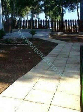 Pineta sul Mare: giardino e panorama dalla camera.zona patio privato