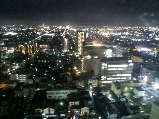 Hotel Century Shizuoka: 眺望