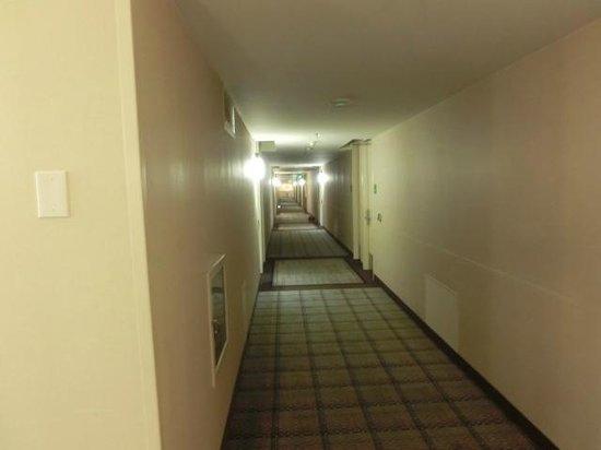 Holiday Inn Los Angeles International Airport: 廊下