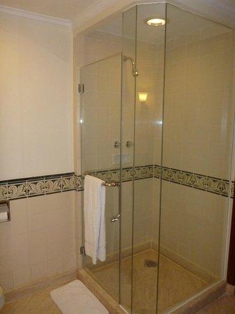 Sheraton Hanoi Hotel: Shower