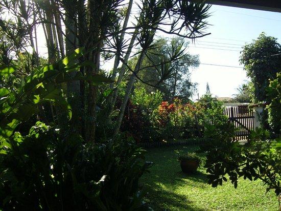 Vegetarian Guesthouse Araruama: Blick von der Terrasse