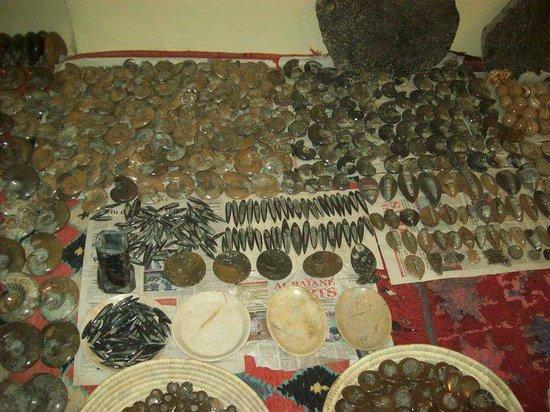 Discovered Moroccan Sahara Meteorite: fss