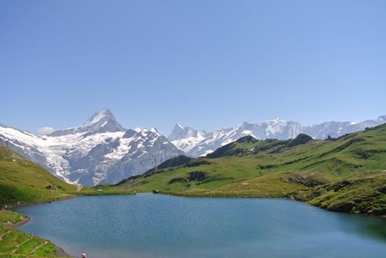 Grindelwald von Bachalpsee