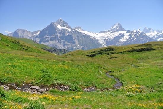 Grindelwald am Weg zum Bachalpsee