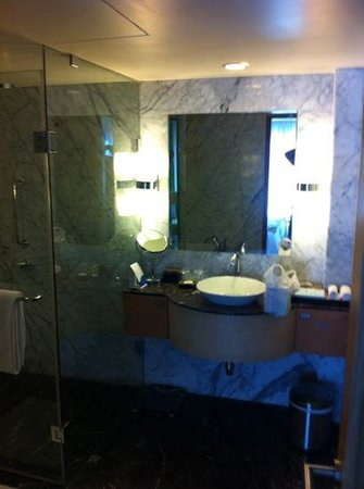 Radisson Blu Hotel Ahmedabad: bathroom