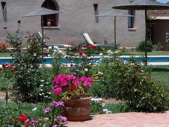Zwembad photo de le jardin des epices taroudant for Hotel jardin de fleurs kyoto