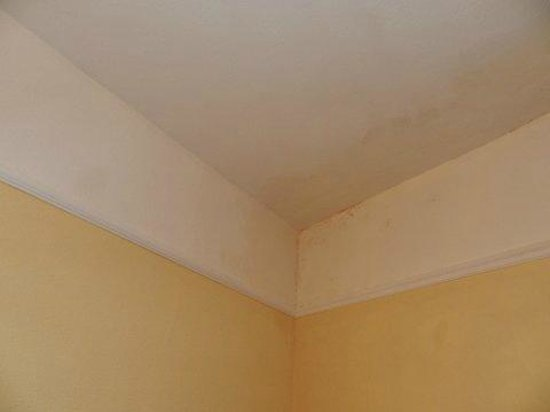 The Cobbled Yard Hotel: techo habitación