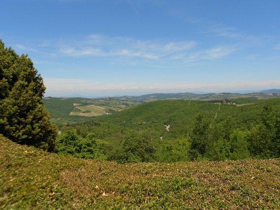 Borgo di Pietrafitta Relais: A view from the property