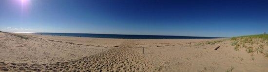 Race Point Beach: Panoramic view