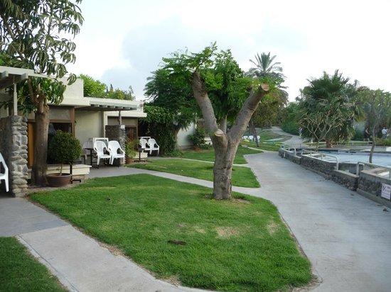 Maagan Kibbutz Holiday Village : Bungalowreihe