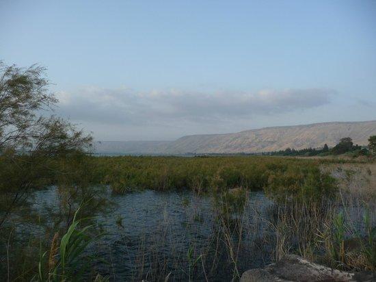 Maagan Kibbutz Holiday Village : Ausblick auf den See Genezareth