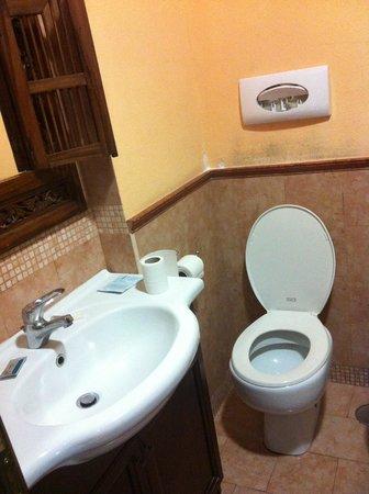 Schilizzi Hotel: Baño completo con ducha, aunque el telefonillo no había donde sujetarlo