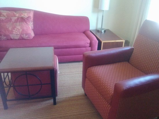Residence Inn Chattanooga Near Hamilton Place: Living Room Area