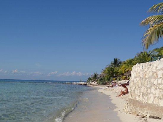 Cozumel Shore Excursions | Carnival Cruise Line
