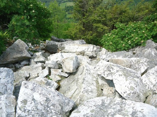 Hawk Mountain Sanctuary: Huge boulder fields are within one hiking trail. You hike around these big ones