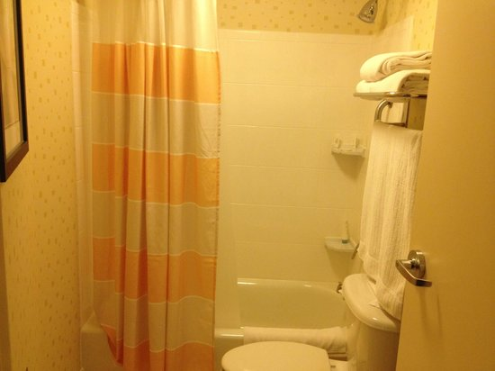 SpringHill Suites Dulles Airport: bathroom