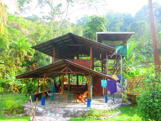 Osa Rainforest Rentals: The house