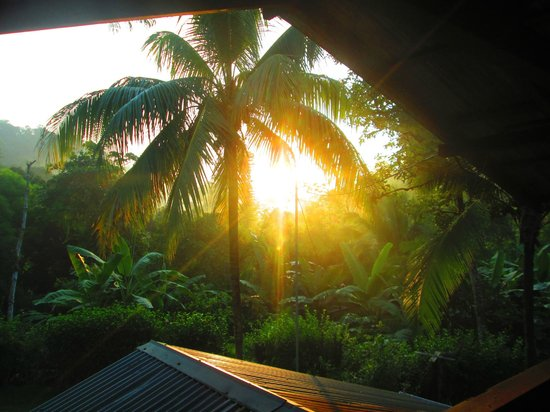 Osa Rainforest Rentals: Sunrise from the bed