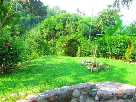Osa Rainforest Rentals: The front yard and pathway to Rio Tigre