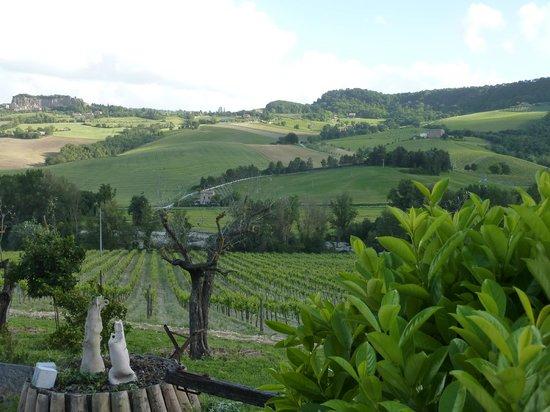 Agriturismo Cioccoleta: Umbria is beautiful