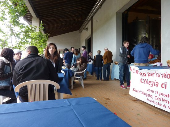 Agriturismo Cioccoleta: Open Cellar Day in Italy at a local winery festivities
