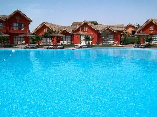 Jungle Aqua Park: Pool