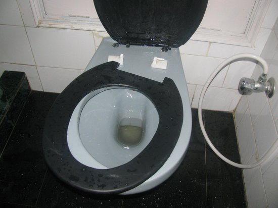 Banon Resorts Manali: broken toilet seat in room no, 403